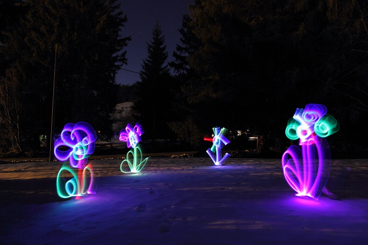 Light painting fleurs